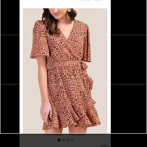 6f730fe8693b Francesca's Collections Dresses | Francescas Pink Leopard Print ...